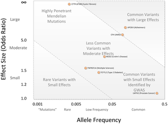 Genome-wide association study - Image: GWAS Disease allele effects