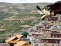 Ganzi-monasterio-d36.jpg