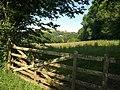 Gate near Modbury Cross - geograph.org.uk - 1379644.jpg