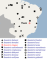 Geographical distribution of Ananteris chagasi scorpions.png