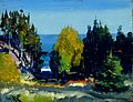 George Bellows - The Grove - Monhegan, 1911.jpg