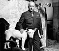 George C. Scott as General Patton and his Bull Terrier.jpg