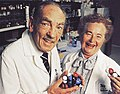 George Hitchings and Gertrude Elion 1988.jpg