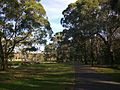 Georges Hall NSW 2198, Australia - panoramio.jpg