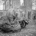Germany Under Allied Occupation BU11450.jpg