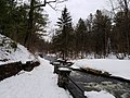 Geyser Creek and Spouter.jpg