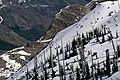 Gifford Pinchot National Forest, Mt St Helens NVM-3 (36338797684).jpg