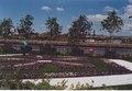 Glasgow Garden Festival - Gardens and the Clyde.pdf