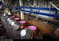 Výroba Golabu v Qamsaru - Kashan 09.jpg