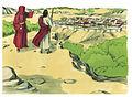 Gospel of Luke Chapter 4-6 (Bible Illustrations by Sweet Media).jpg