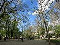 Grădina Icoanei, municipiul București, Piața Cantacuzino Gh.JPG