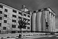 Grain Elevator (The Dalles, Oregon).jpg