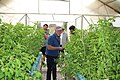 Green Age Aquaponics - Armenia 05.jpg