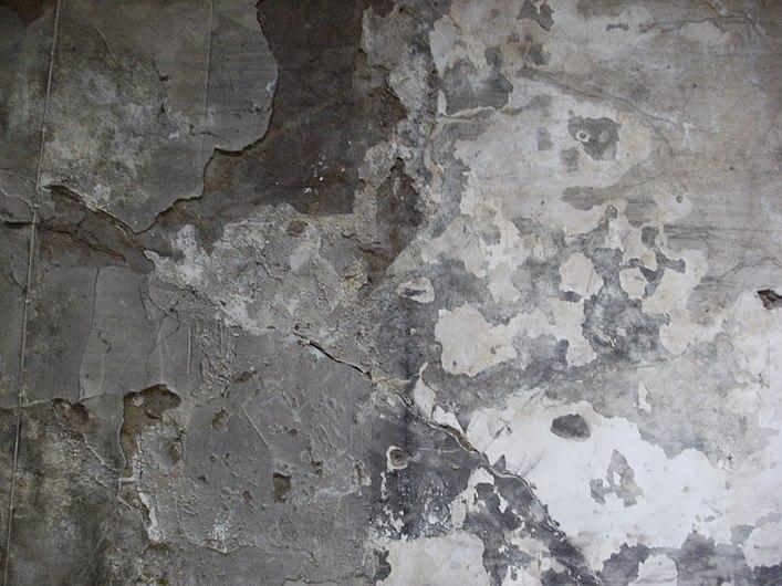 Grey wall.JPG