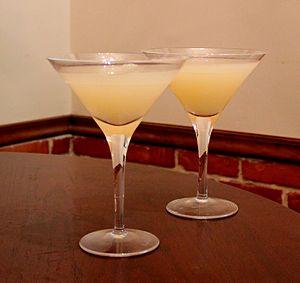 Greyhound (cocktail) - Two greyhound cocktails