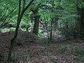 Grim's Ditch, Stockton Wood near Stockton 3 - geograph.org.uk - 568559.jpg