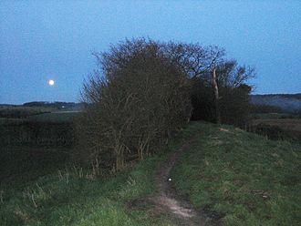 Grim's Ditch - Grim's Ditch, near Hailey, West Oxfordshire