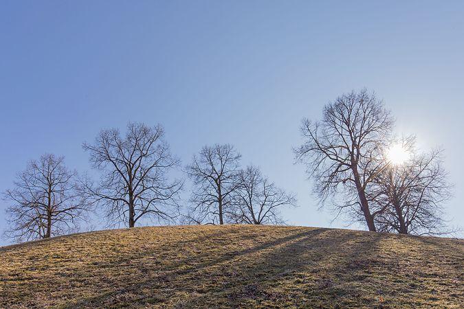 Hügel am Mollsee, Westpark, Winter 2017, München.jpg