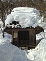 Haiden of Hatogaya Hachiman Shrine in Gassho-zukuri Minkaen Garden 20150121.jpg