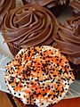 Halloween cupcakes for Pumpkin Carving Party 2009.jpg