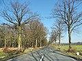 Hamm, Germany - panoramio (5216).jpg