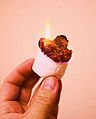 Hand Holdng Fire Toasted Marshmallow (3310040440).jpg