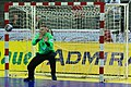 Handball-WM-Qualifikation AUT-BLR 143.jpg