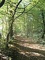 Harbke Forst Schlosspark zum Bärengrund - panoramio - Gottfried Hoffmann -… (3).jpg