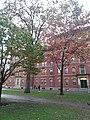 Harvard University,. November, 2019. pic.r2z Cambridge, Massachusetts.jpg