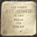 Heidelberg Alice Hochherr.png