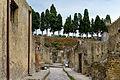 Herculaneum - Ercolano - Campania - Italy - July 9th 2013 - 15.jpg