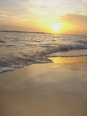 English: Hikkaduwa beach by sunset.