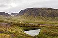 Hrafnseyrarheiði, Vestfirðir, Islandia, 2014-08-15, DD 025.JPG