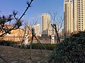Huangdao, Qingdao, Shandong, China - panoramio (59).jpg