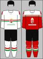 Hungary national ice hockey team jerseys 2016.png