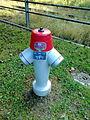 Hydrant 301 Ostermundigen.jpg