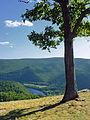 Hyner View State Park (3).jpg