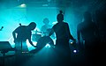 I-Wolf and the Chainreactions at Fluc Wanne WAVES VIENNA 2013 37.jpg