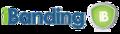 IBanding Logo.png