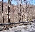 III, WV, USA - panoramio - Idawriter (4).jpg