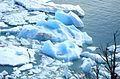 Ice Floes - Flickr - gailhampshire.jpg