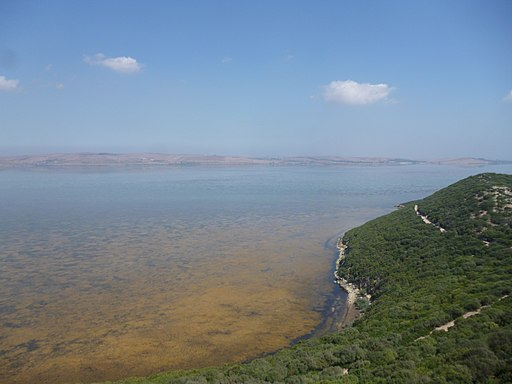 Ichkeul National Park-130277