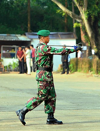 Officer (armed forces) - An Indonesian army officer serving as a ceremonial field commander