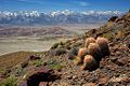 Inyo Mountain Wilderness.jpg