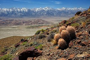 Inyo Mountains - Inyo Mountain Wilderness