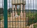 Isle of Wight Zoo - tiger m. indisk tema.jpg