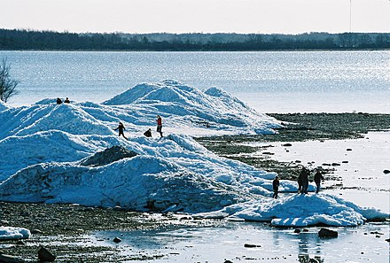 Piles of drift ice on the shore of Puhtulaid, near Virtsu, Estonia, in late April Jaamaed Puhtulaiul 1.JPG