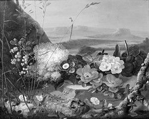 Blomster på en sten. I baggrunden et bjerglandskab