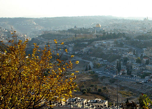 JPF - Old City From Mount Scopus