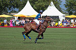 Jaeger-LeCoultre Polo Masters 2013 - 31082013 - Match Legacy vs Jaeger-LeCoultre Veytay for the third place 36.jpg